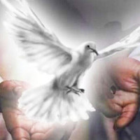 Let the Holy Spirit be your guide every day